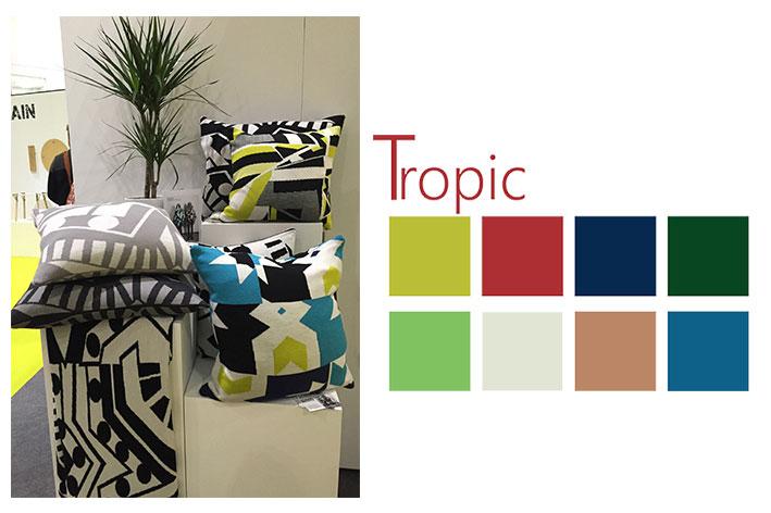Tropic-3rd-image-copy